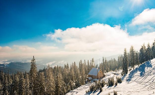 Piękny krajobraz górskiego lasu w słoneczny, ciepły dzień na tle gór drzew i słońca. pojęcie podróży w górach i rekreacji na świeżym powietrzu