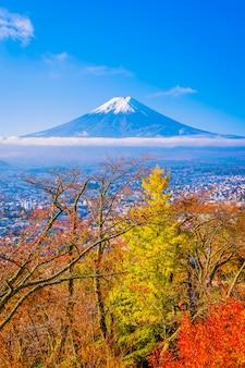 Piękny krajobraz halny fuji wokoło liścia klonowego drzewa w jesieni przyprawia