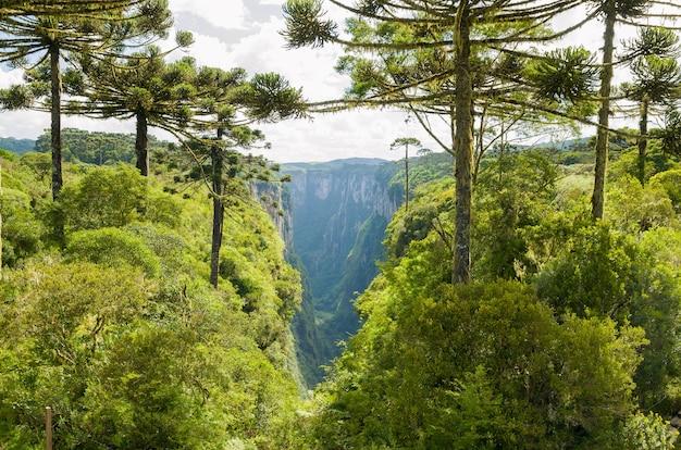 Piękny krajobraz kanionu