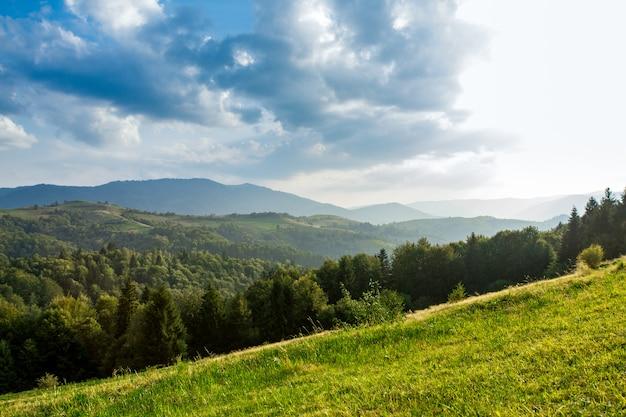 Piękny krajobraz letnich karpat