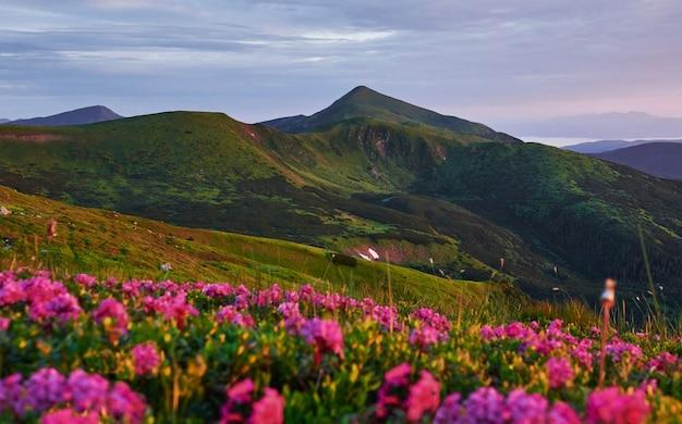Piękny krajobraz. majestatyczne karpaty. widok zapierający dech w piersiach.