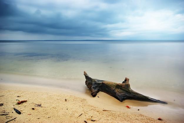 Piękny krajobraz morski. kompozycja natury.