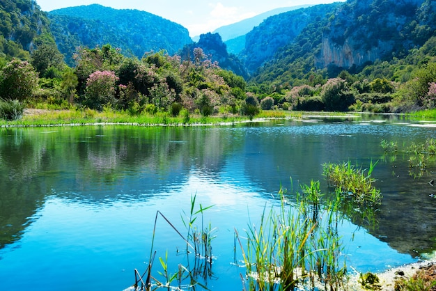 Piękny krajobraz na wybrzeżu jeziora z kwiatami, zieloną trawą i górami w tle