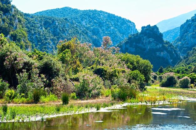 Piękny krajobraz na wybrzeżu jeziora z kwiatami, zieloną trawą i górami