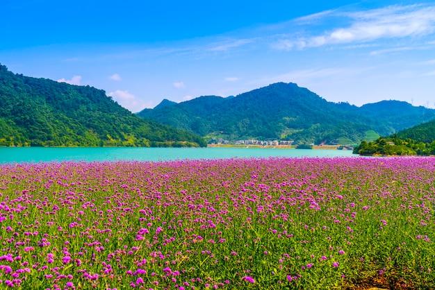 Piękny krajobraz qiandao lake