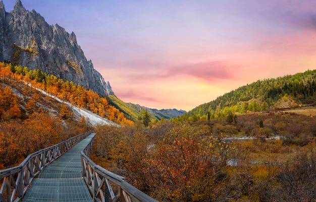 Piękny krajobraz rezerwatu przyrody yading w chinach.