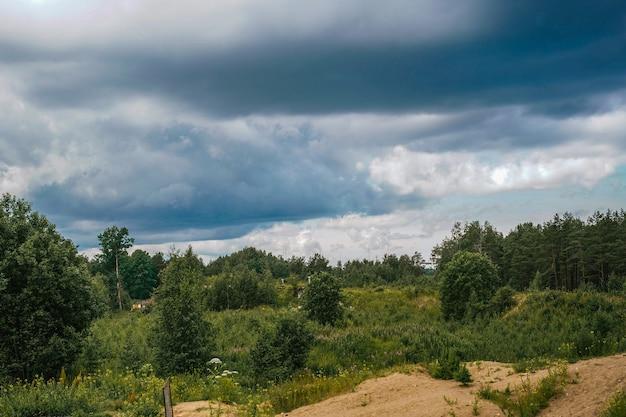 Piękny krajobraz rosyjskiej przyrody letni las burzliwe niebo region leningradzki rosja