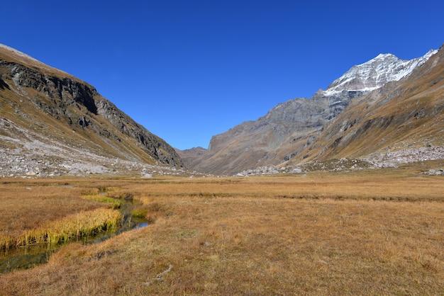 Piękny krajobraz rzeka krzyżuje wysokogórską górę w żółtej trawie pod niebieskim niebem troszkę
