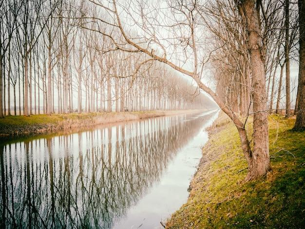 Piękny krajobraz rzeki w damme w belgii