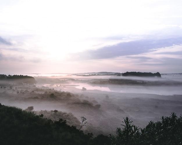 Piękny krajobraz rzeki w górzystym lesie pokrytym mgłą w zuid-kennemerland