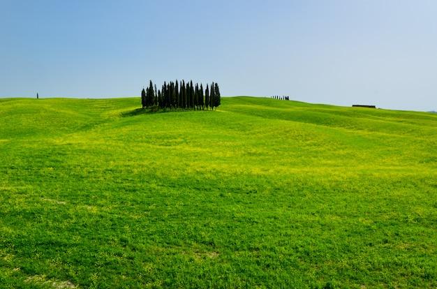 Piękny krajobraz toskanii
