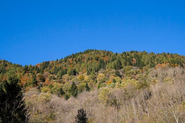 Piękny krajobraz w dolomitach z górami, jeziorem i przyrodą