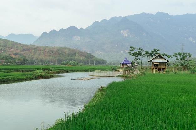 Piękny krajobraz w mai chau, wietnam, azja południowo-wschodnia