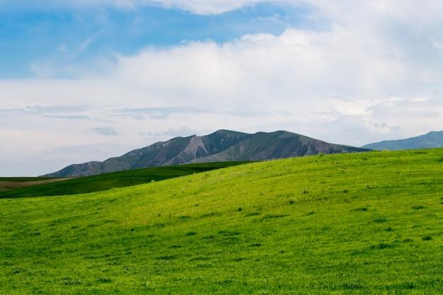 Piękny krajobraz wiosny i lata.