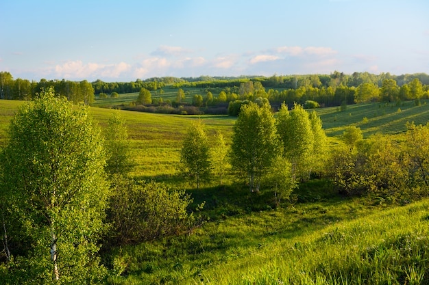 Piękny krajobraz wzgórz