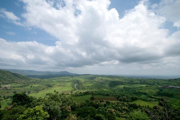 Piękny krajobraz z drzewami i górą.