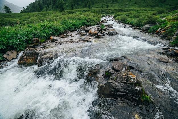 Piękny krajobraz z dużymi kamieniami w karabin wodny górskiej rzeki