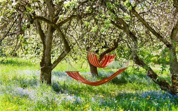 Piękny krajobraz z dwoma czerwonymi hamakami w wiosennym ogrodzie z kwitnącymi jabłoniami, słoneczny dzień. koncepcja wypoczynku, turystyki wiejskiej.
