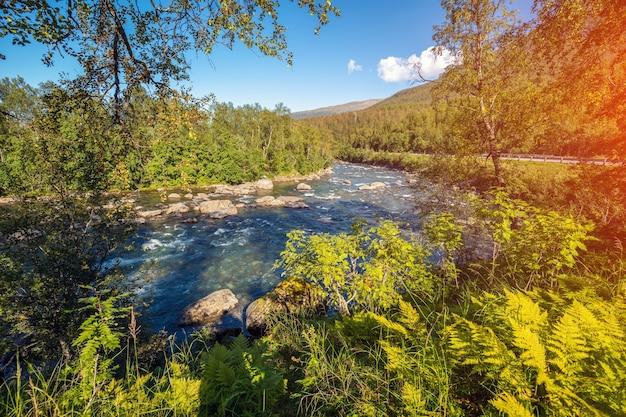 Piękny krajobraz z górską rzeką w słoneczny dzień. piękna przyroda norwegii. europa