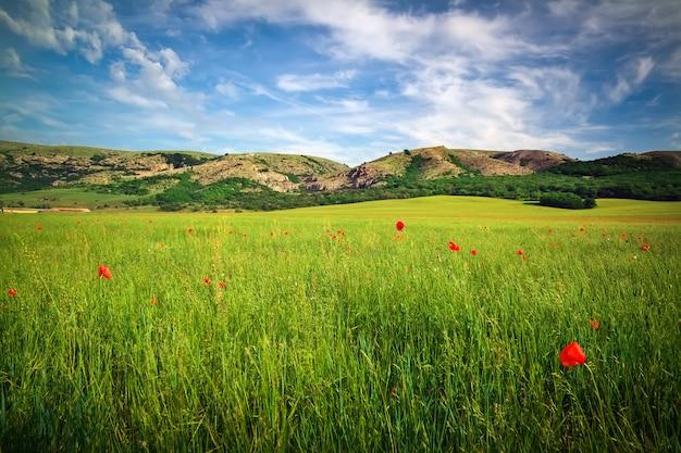 Piękny krajobraz z polem, górami i pochmurnym niebem.