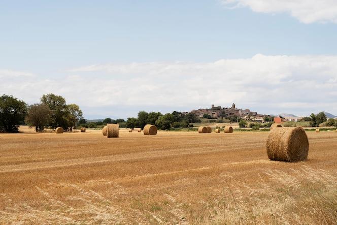 Piękny krajobraz z sianem