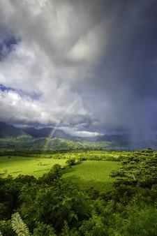 Piękny krajobraz z zieloną trawą i zapierającym dech w piersiach widokiem tęczy w burzowych chmurach