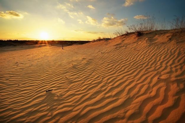Piękny krajobraz z zmierzchu niebem i falistym piaskiem. kompozycja natury