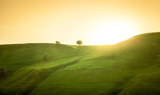 Piękny krajobraz zielonych wzgórz o wschodzie słońca