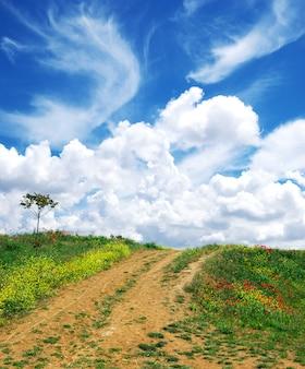 Piękny krajobraz