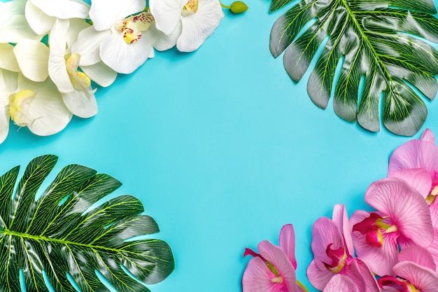Piękny kwiecisty tło tropikalny drzewo opuszcza monstera i palmy, storczykowy kwiat