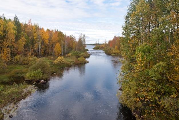 Piękny las jesienią
