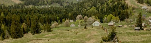 Piękny lato krajobraz, wioska blisko karpacki, ukraina, europa.
