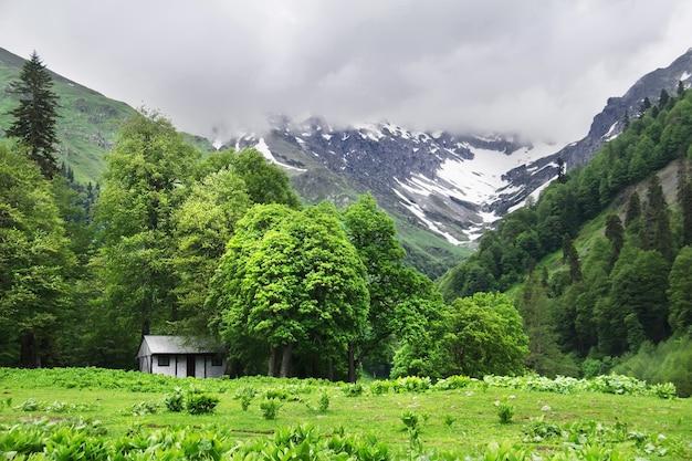 Piękny letni krajobraz. mały biały dom w górach. avadhara, republika abchazji.