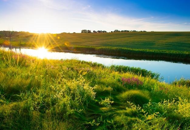 Piękny letni krajobraz, piękny widok na jezioro, w otoczeniu łąk i zielonego lasu. błękitne niebo nad równiną, przyroda, tło