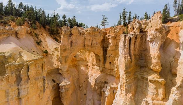 Piękny letni krajobraz w górach formacja skalna w parku narodowym zion canyon