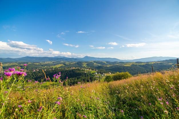 Piękny letni krajobraz wsi wśród karpat.