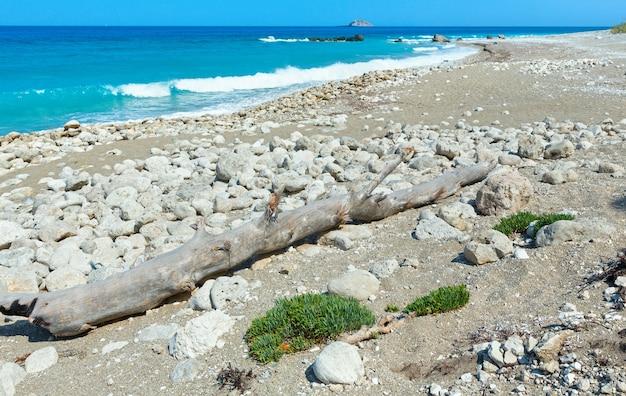 Piękny letni krajobraz wybrzeża lefkady z suchym pniem drzewa na kamienistej plaży (grecja, morze jońskie,)