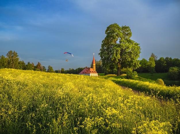 Piękny letni krajobraz z pałacem
