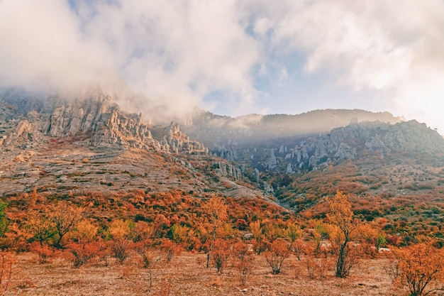 Piękny malowniczy górski krajobraz jesień z jesiennymi drzewami i żółtymi liśćmi na tle gór skalistych