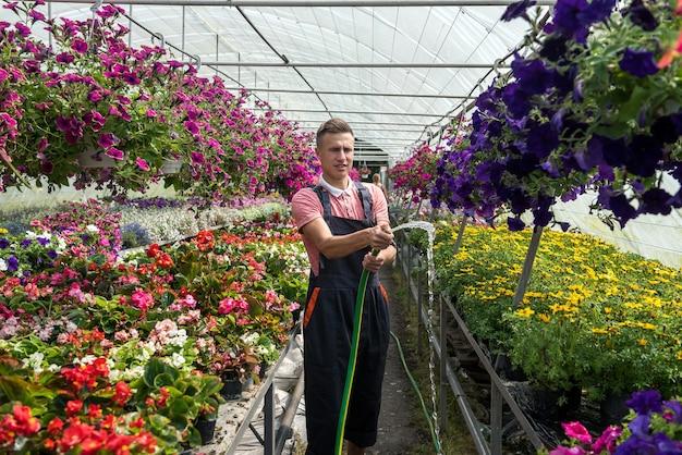 Piękny młody facet rozlewa kwiaty w szklarni. botaniczny