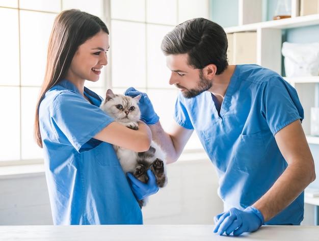 Piękny młody weterynarz trzyma ślicznego kota.