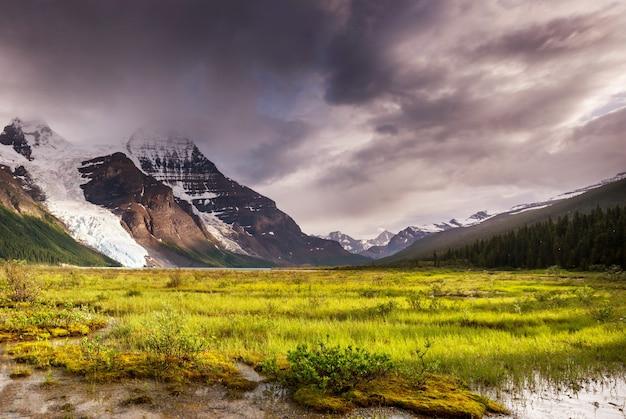 Piękny mount robson w sezonie letnim, kanada