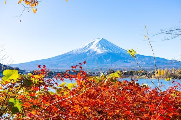 Piękny mtfuji z czerwonym liściem klonu jesienią w japonii