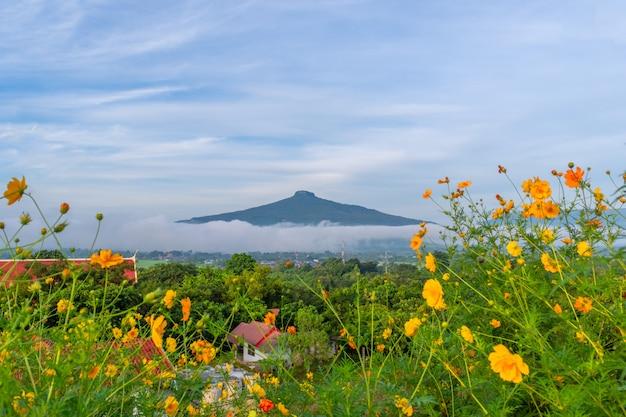 Piękny naturalny krajobraz dla relaksować w phu luang, loei prowincja thailand