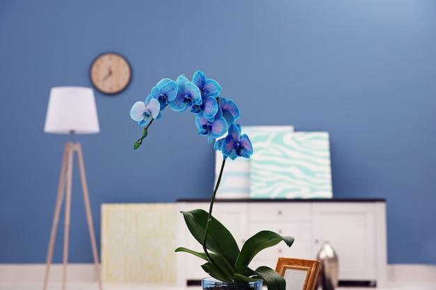Piękny niebieski kwiat orchidei na stole w nowoczesnym pokoju