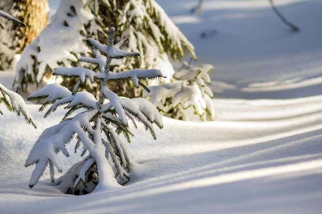 Piękny niesamowity zimowy krajobraz górski.