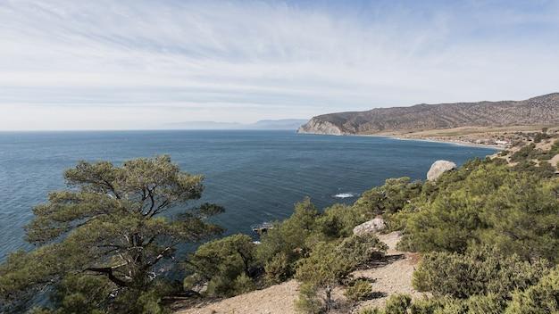 Piękny ocean krajobraz i zielone drzewa