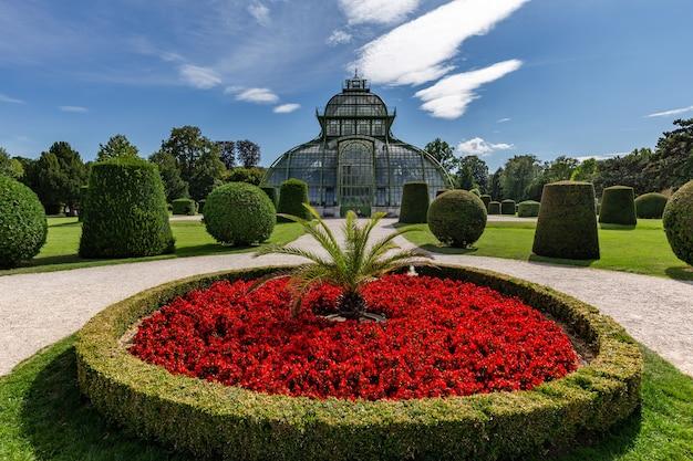 Piękny ogród botaniczny pałacu schönbrunn w wiedniu, austria