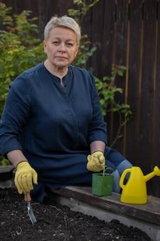 Piękny ogrodnik przesadzający młodą paprykę z doniczki do podniesionej grządki ogrodowej