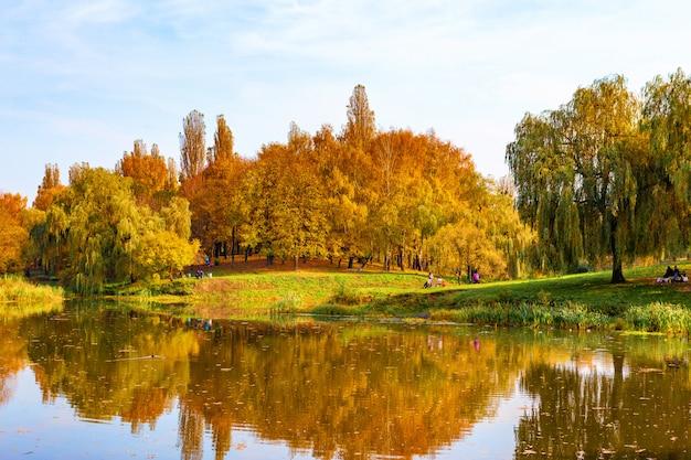 Piękny park jesień przy słonecznej pogodzie
